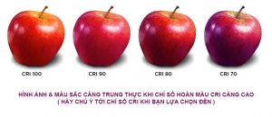 Chỉ số hoàn màu CRI - Thước đo độ tự nhiên của ánh sáng